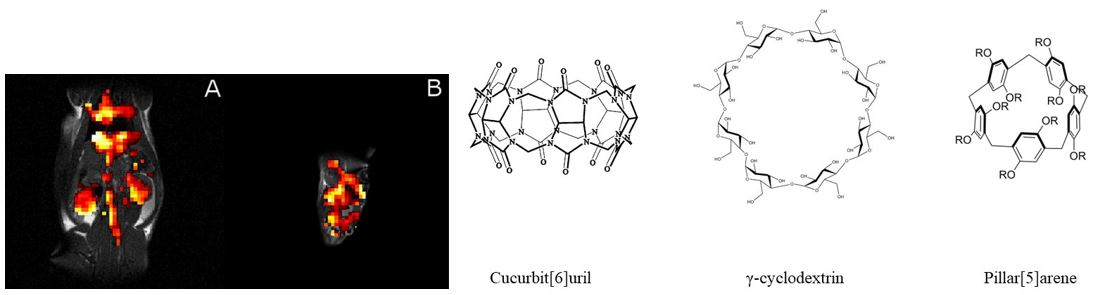 Figure 2. Chemical structure of supramolecular cages used for HyperCEST effect detection in our lab